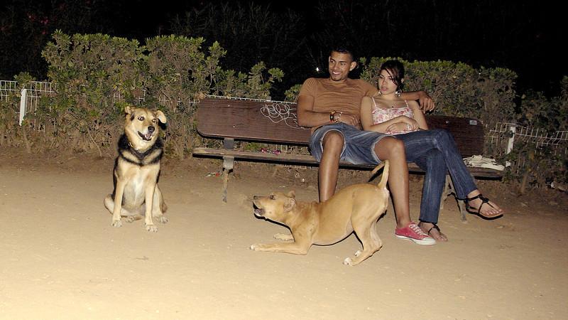 Maddy, mommy, pitbull, puppy, ayora