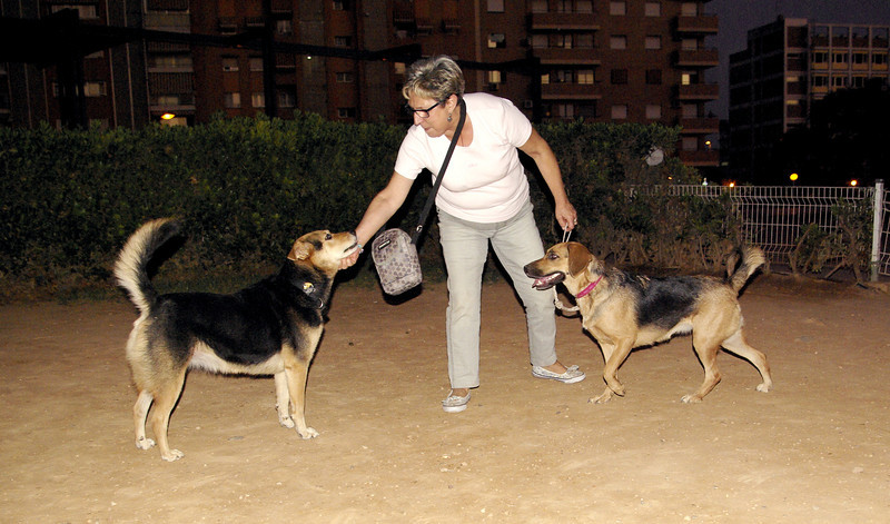 Dama, Maddie, owner, 001, oct11, people, mom, mother,  ayora