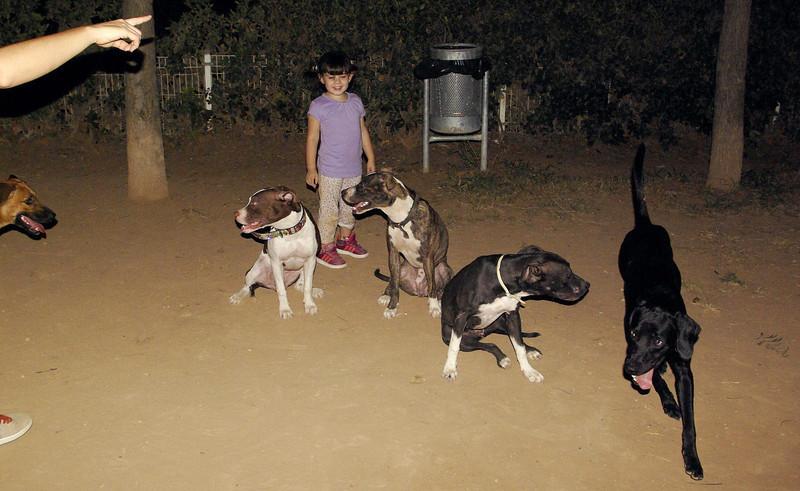 Naya, Sade, Lia, Fifty, Laia_001