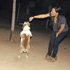 Dana (new bulldog girl)_002