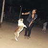 Dana (new bulldog girl)_001
