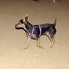Tito (new boy)_001