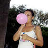 Pitbulls & balloons_001