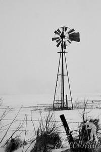 windmill black&white 12x18