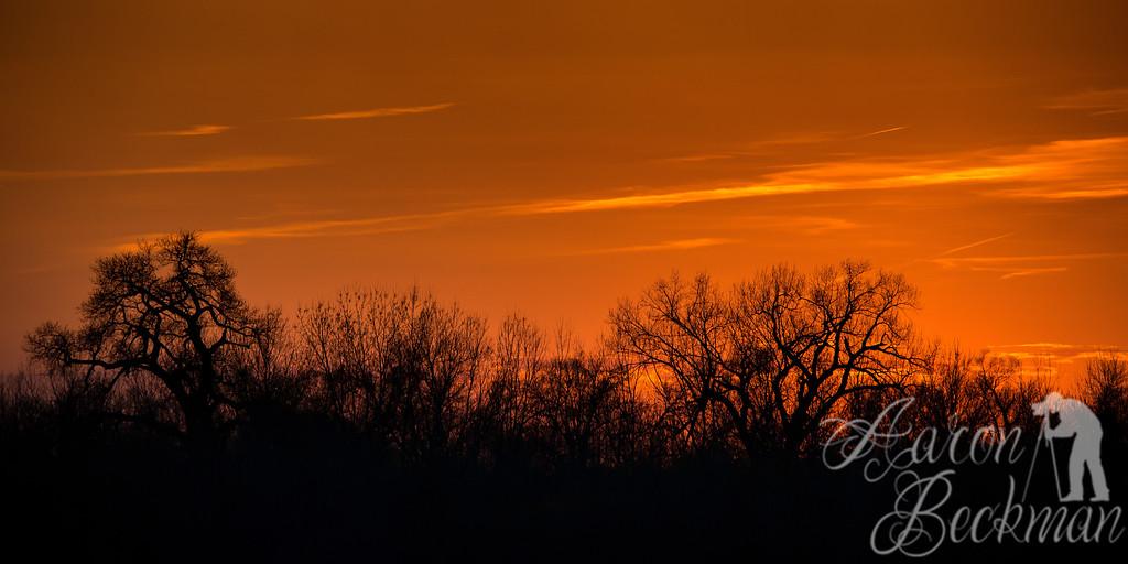 sunset 20x40