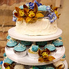 Cupcake_Display_Aaron_and_Christine 003