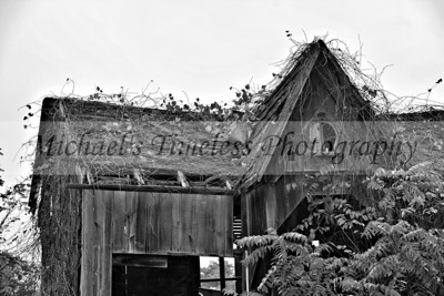 House_Old_0002-039_04x06_BW