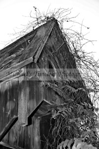 House_Old_0002-040_04x06_BW