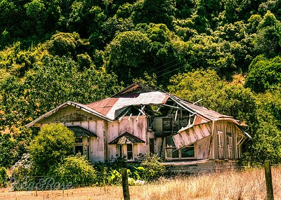 Oops the roof, Tolaga Bay.