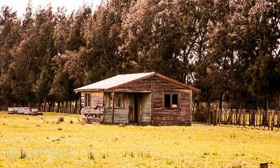 Deserted home Ruawa