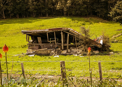Collapsed shed in Kaeo