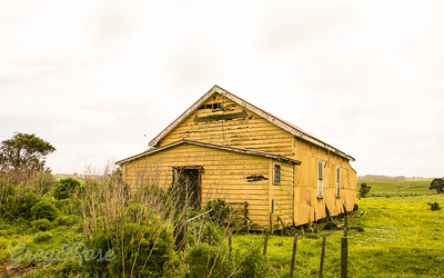 Old Yellow Shed Dargaville