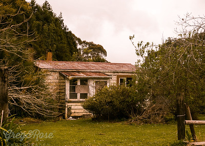 Wee deserted cottage at Okaihua.