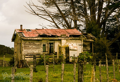 Wee house in trees from the front, Okaihau.