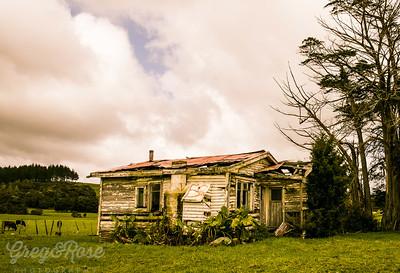 Wee house in trees OKaihau.