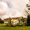 Wee house in trees OKaihau