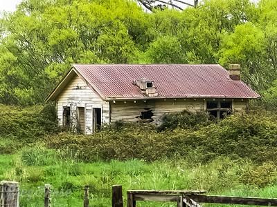 House in the Blackberries 2