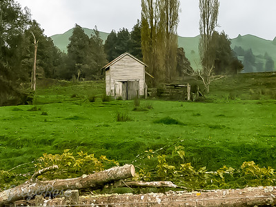 Shed in a filed