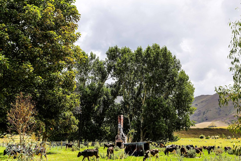 Ok I've got cows but where is the house I heat, Athol
