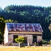 Nelson West Coast to Dunedin-1000116