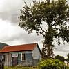 Nelson West Coast to Dunedin-1000187-4-Edit