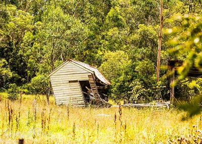 Shed on a Lean Cessnock.
