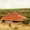 Abandoned House in the vines West Tamer, Tasmania