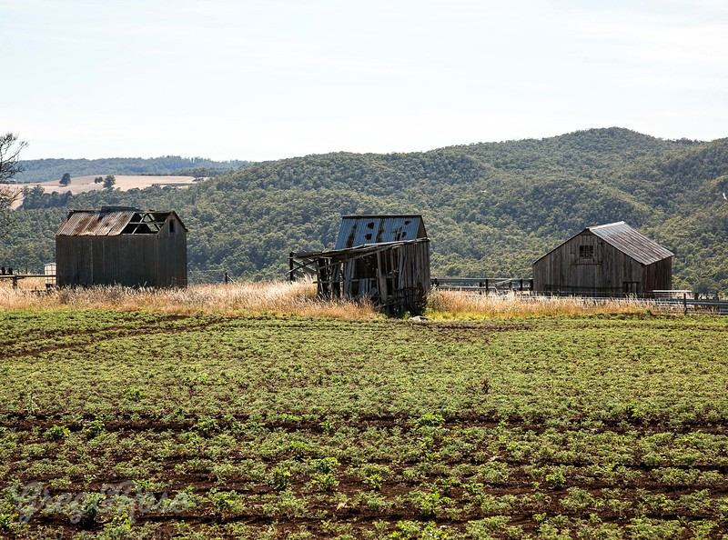Three sheds in a row near to  Forth, Tasmania