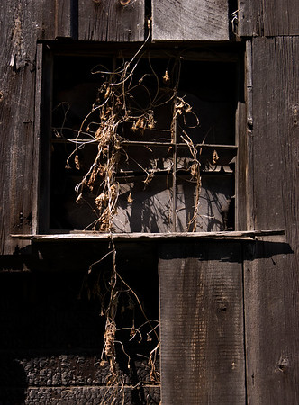 Old Barn Window - Chelsea, Michigan
