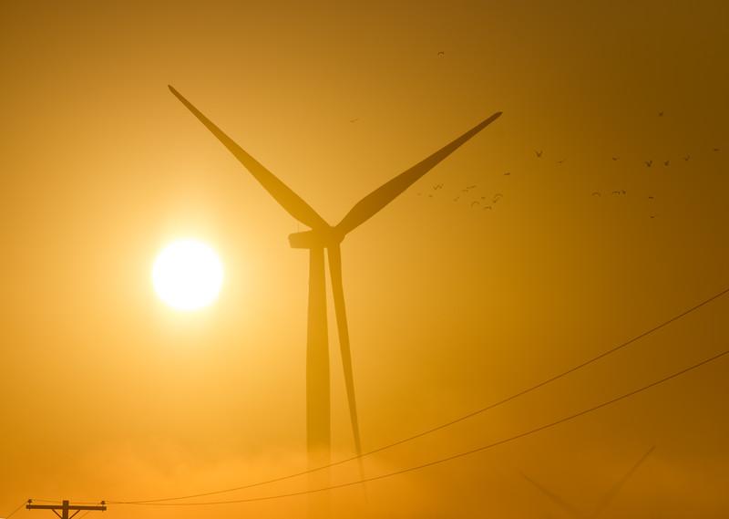 Windmill_DSC7584.jpg