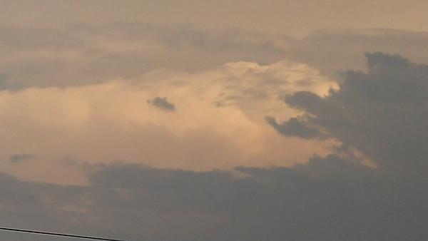 Animal cloud near Freer, Texas.