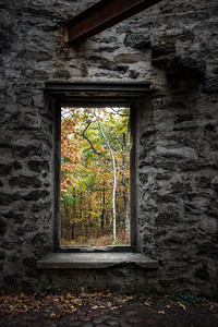 Autumn within Cunningham Tower