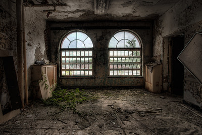 room with two arched windows