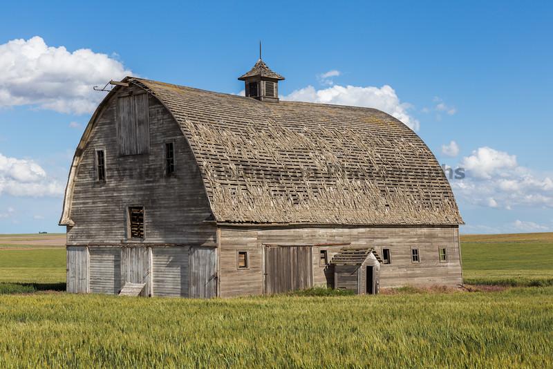 Abandoned Barn 80
