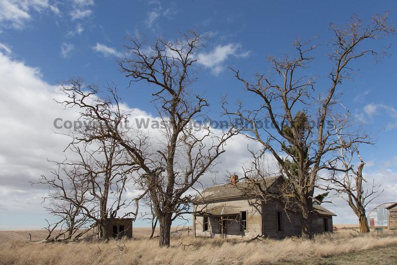 Abandoned House 211