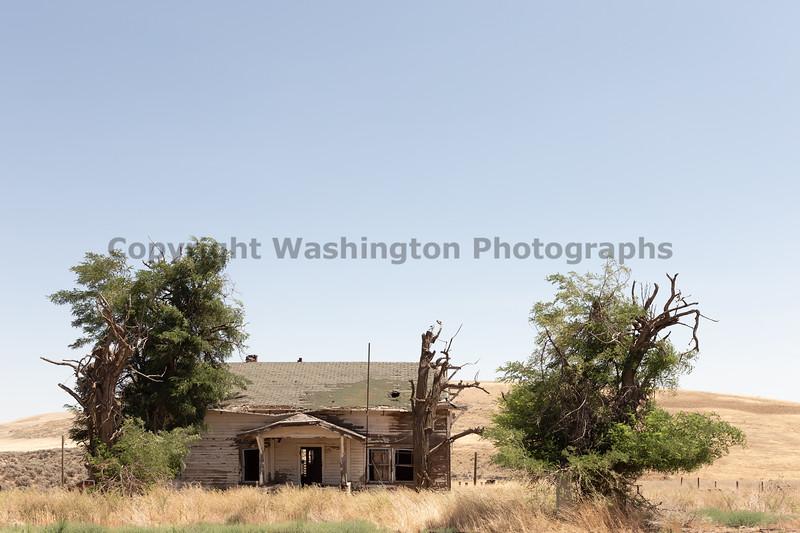 Abandoned House 470