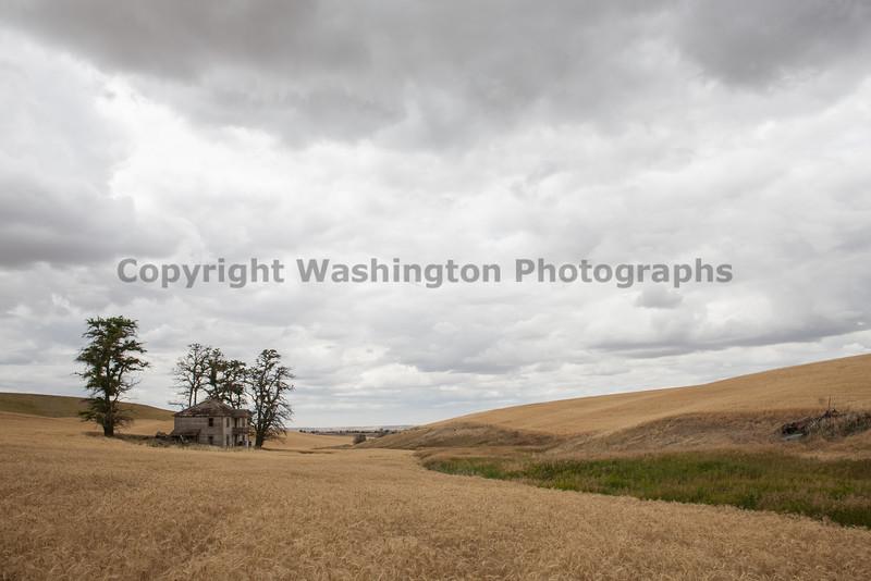 Abandoned House 281