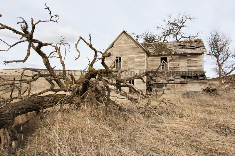 Abandoned House 134