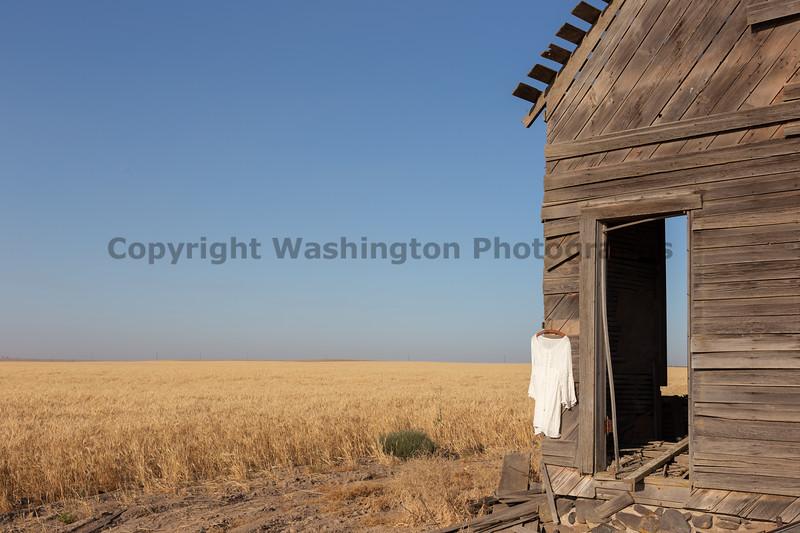 Abandoned House 482