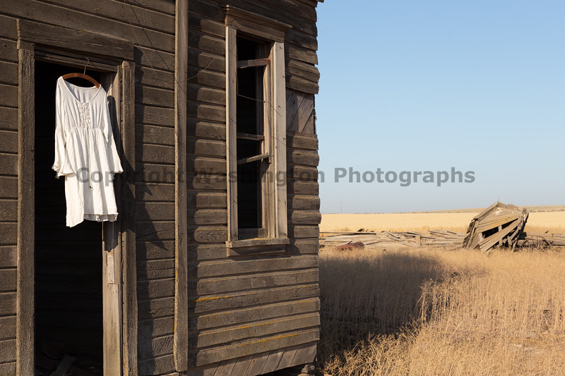 Abandoned House 479
