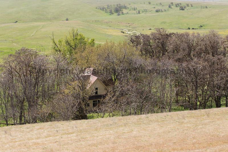 Abandoned House 424