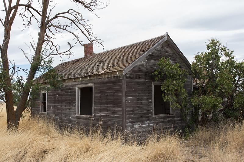 Abandoned House 410