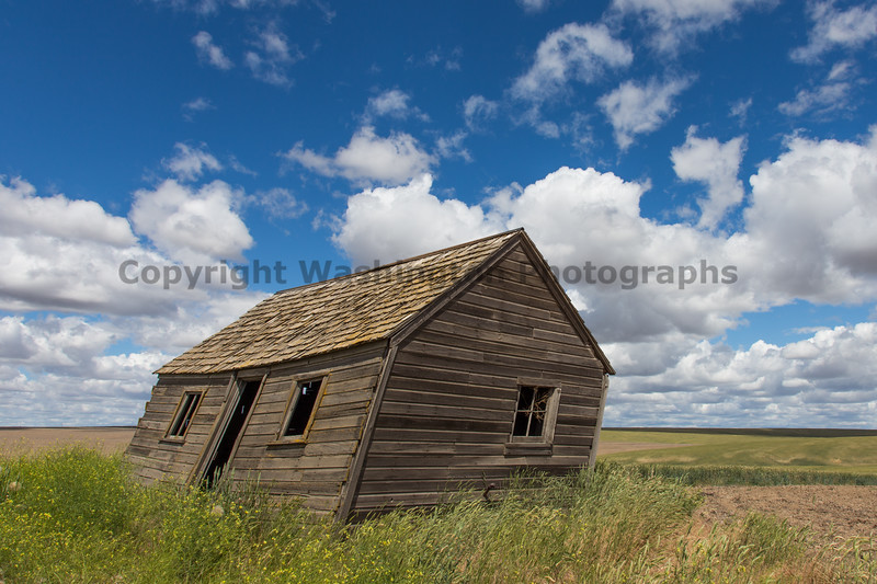 Abandoned House 332