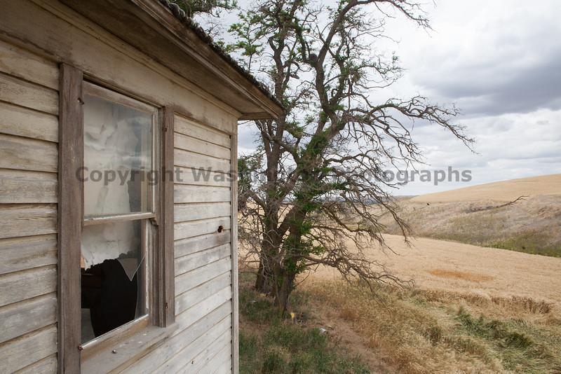 Abandoned House 274