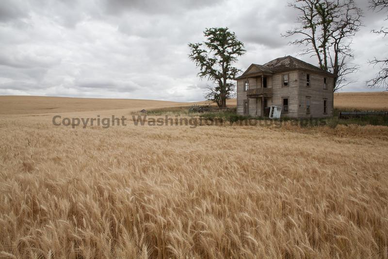 Abandoned House 286