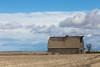Abandoned Barn 041
