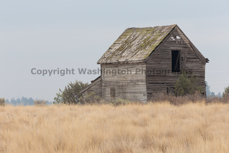 Abandoned House 484