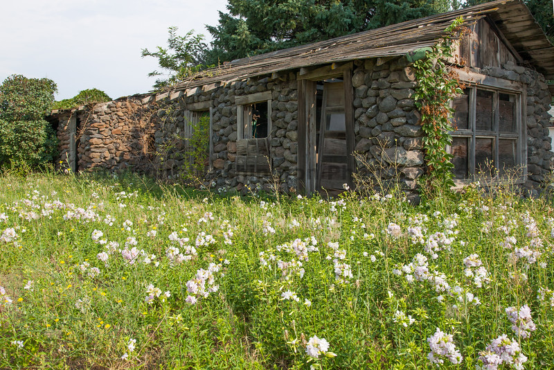 Abandoned House 268