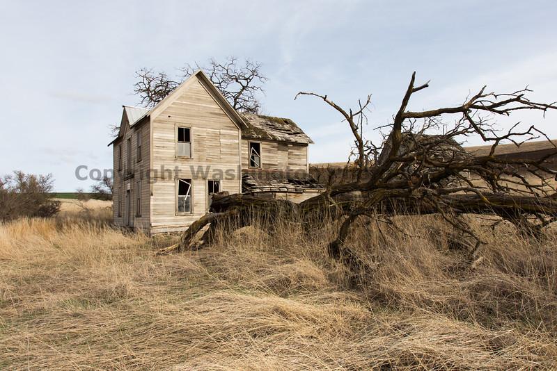 Abandoned House 135