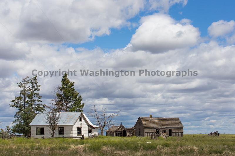 Abandoned House 336
